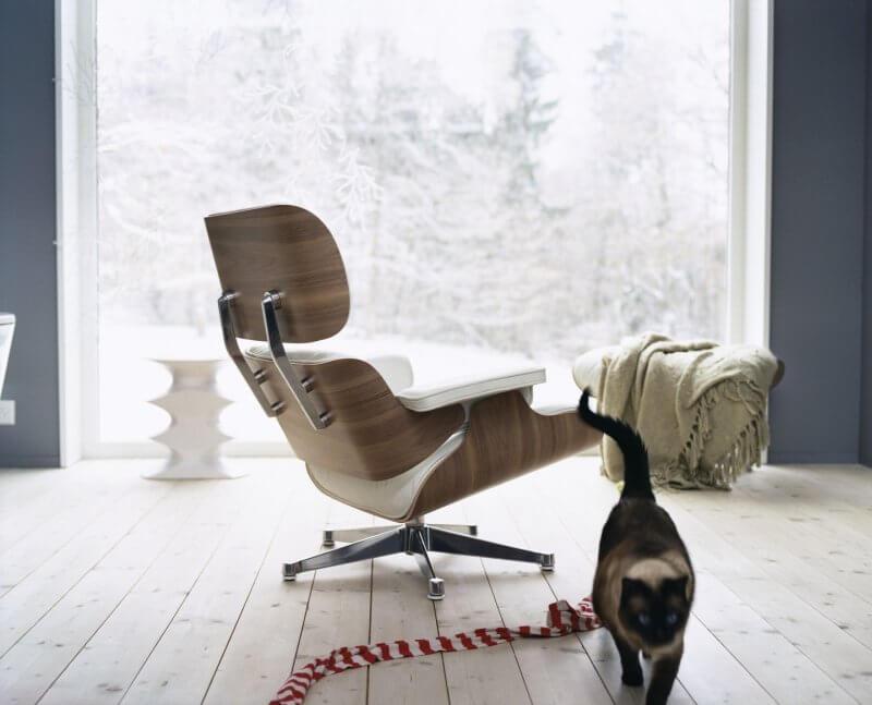 Eames Lounge Chair mit Katze
